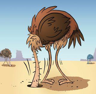 [Image: ostrich-sand.jpg]