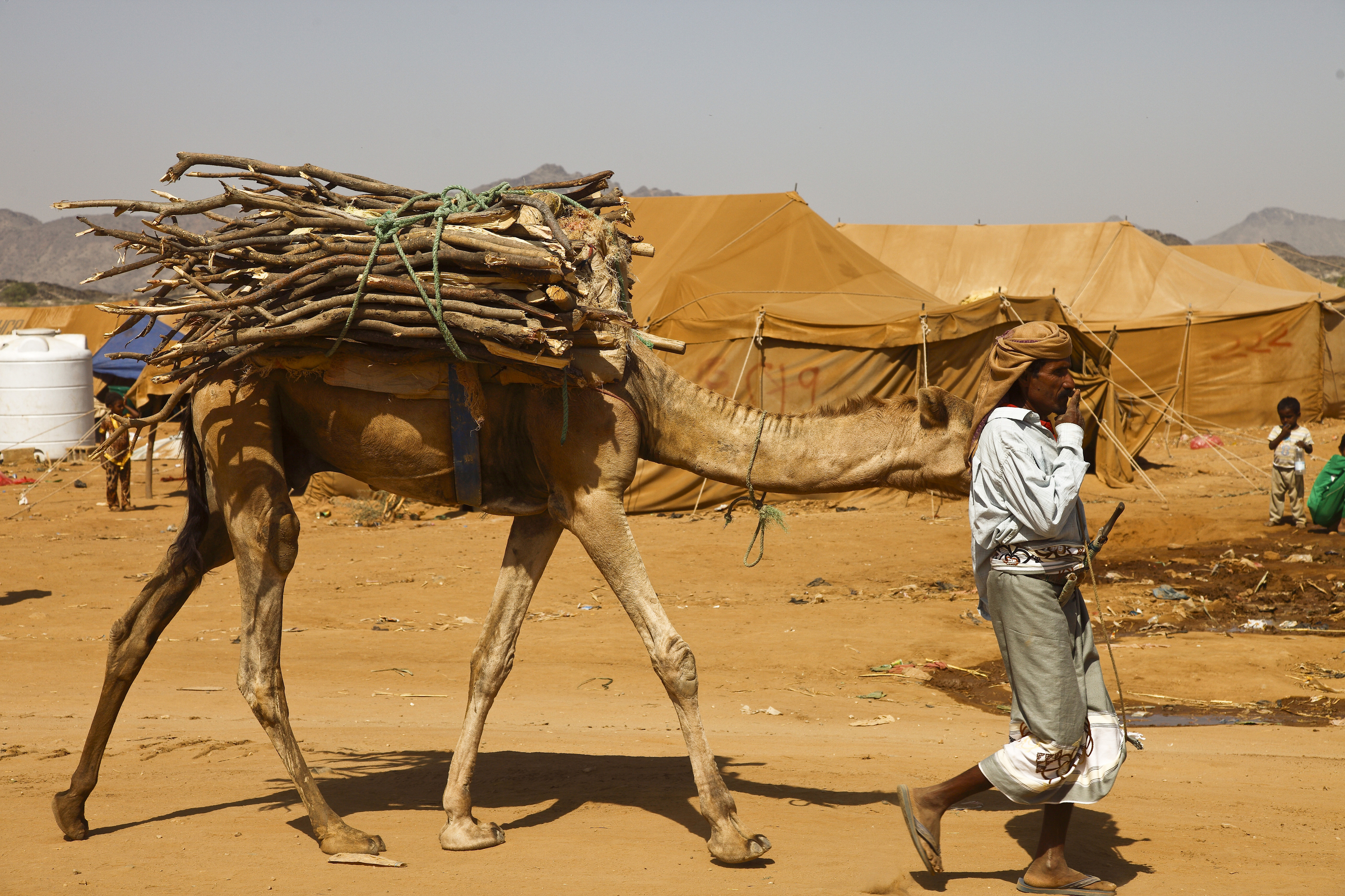 A man displaced by the war between Houthis and the former Yemeni government walks with his camel in northwest Yemen. By IRIN.