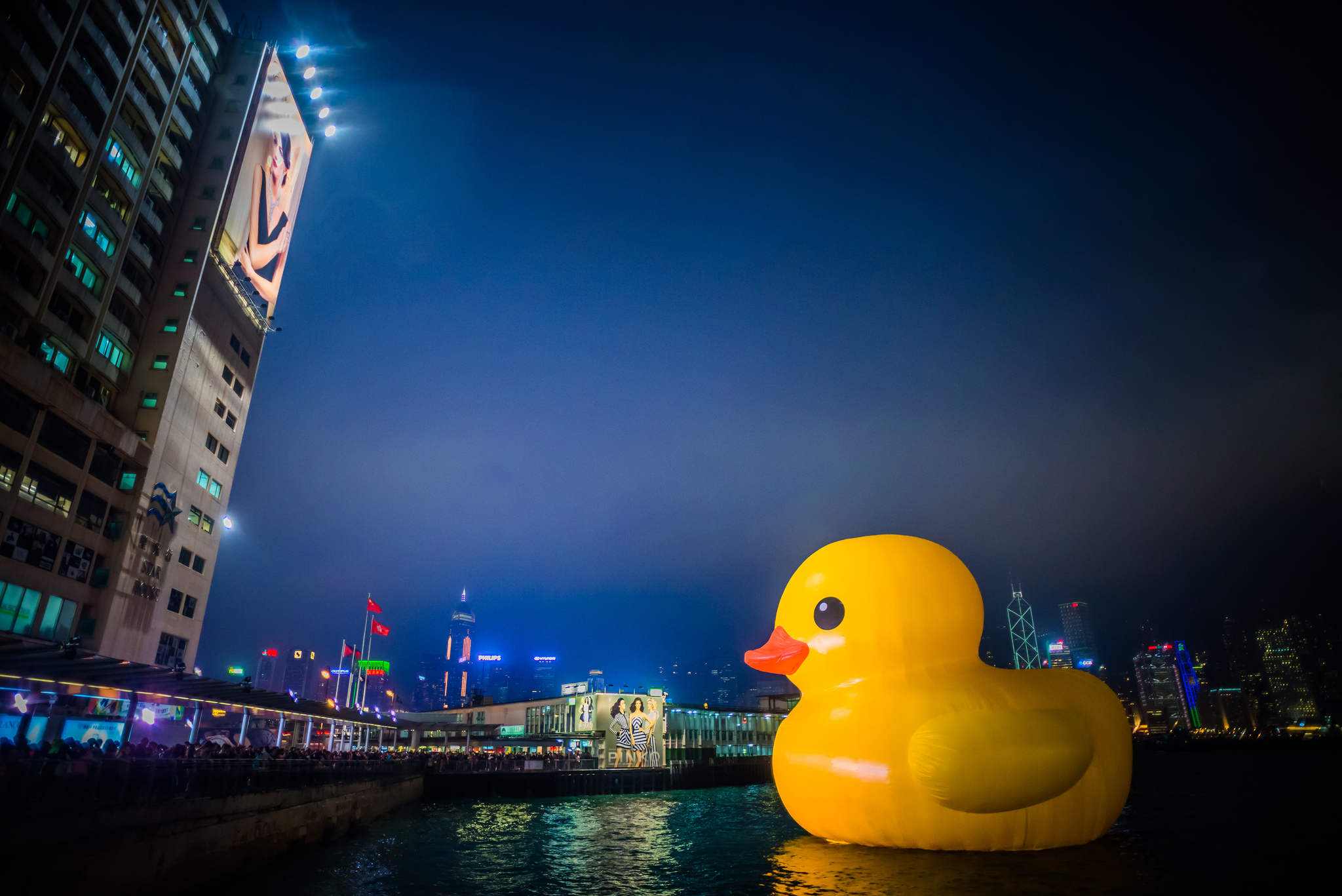 An enormous rubber duck in Hong Kong. By Chris Zielecki.